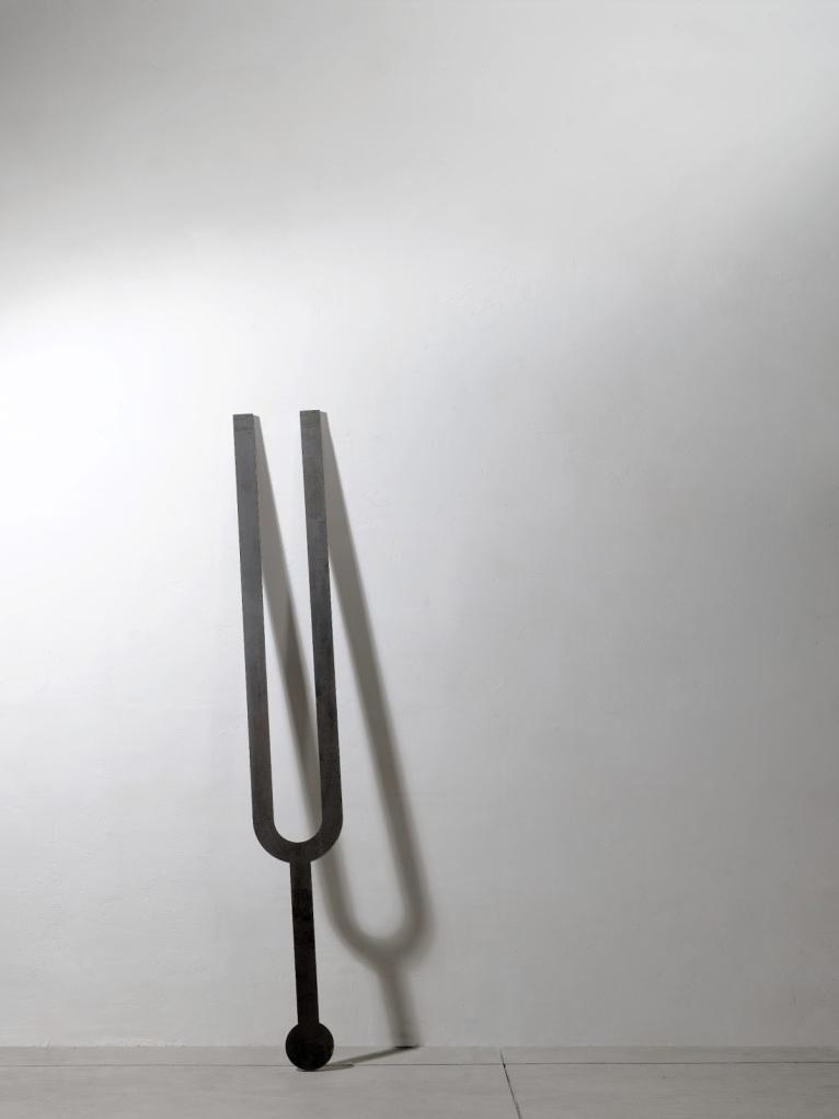 Diapason, 2009, ed.3, collezione privata, Verona